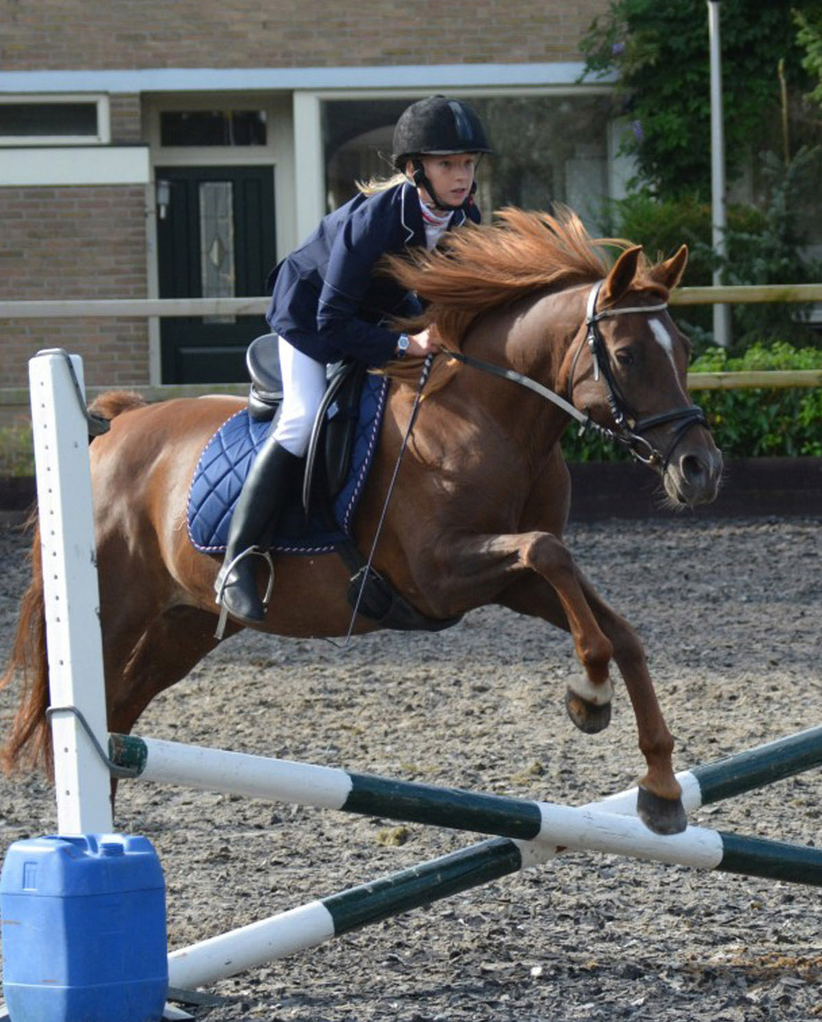 Paardensport vereniging De Lekruiters